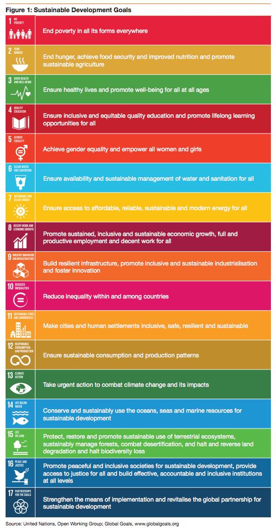 UN Sustainable Development Goals 2030