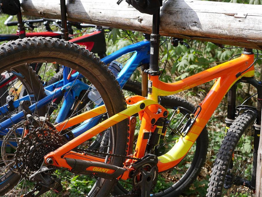 mountain-bike-2236918_1920.jpg