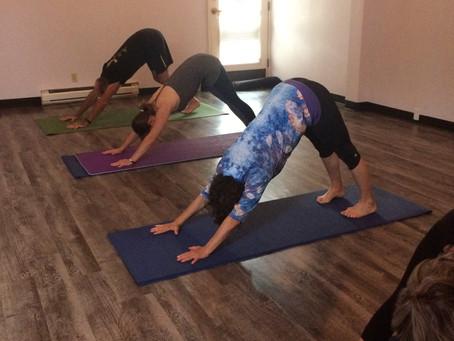 The Future of Yoga??
