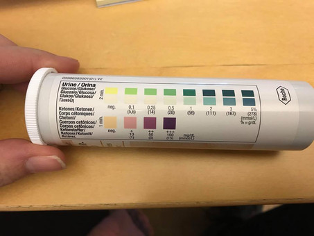 Diabetes hos dvärghamstrar