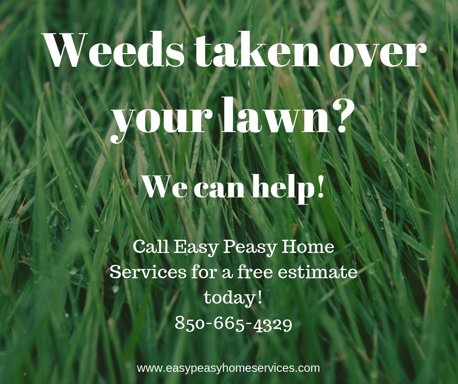 Weed control ad with contact information 850-665-4329