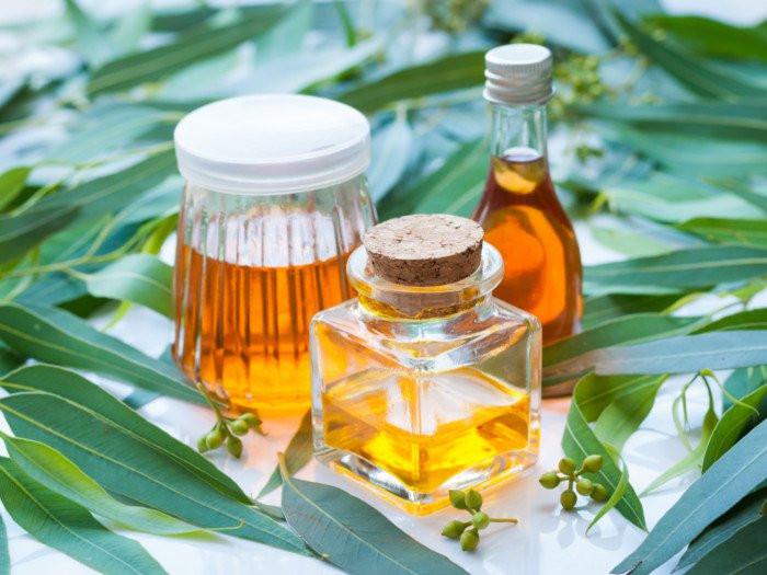 Repelentes para ácaros com óleos essenciais