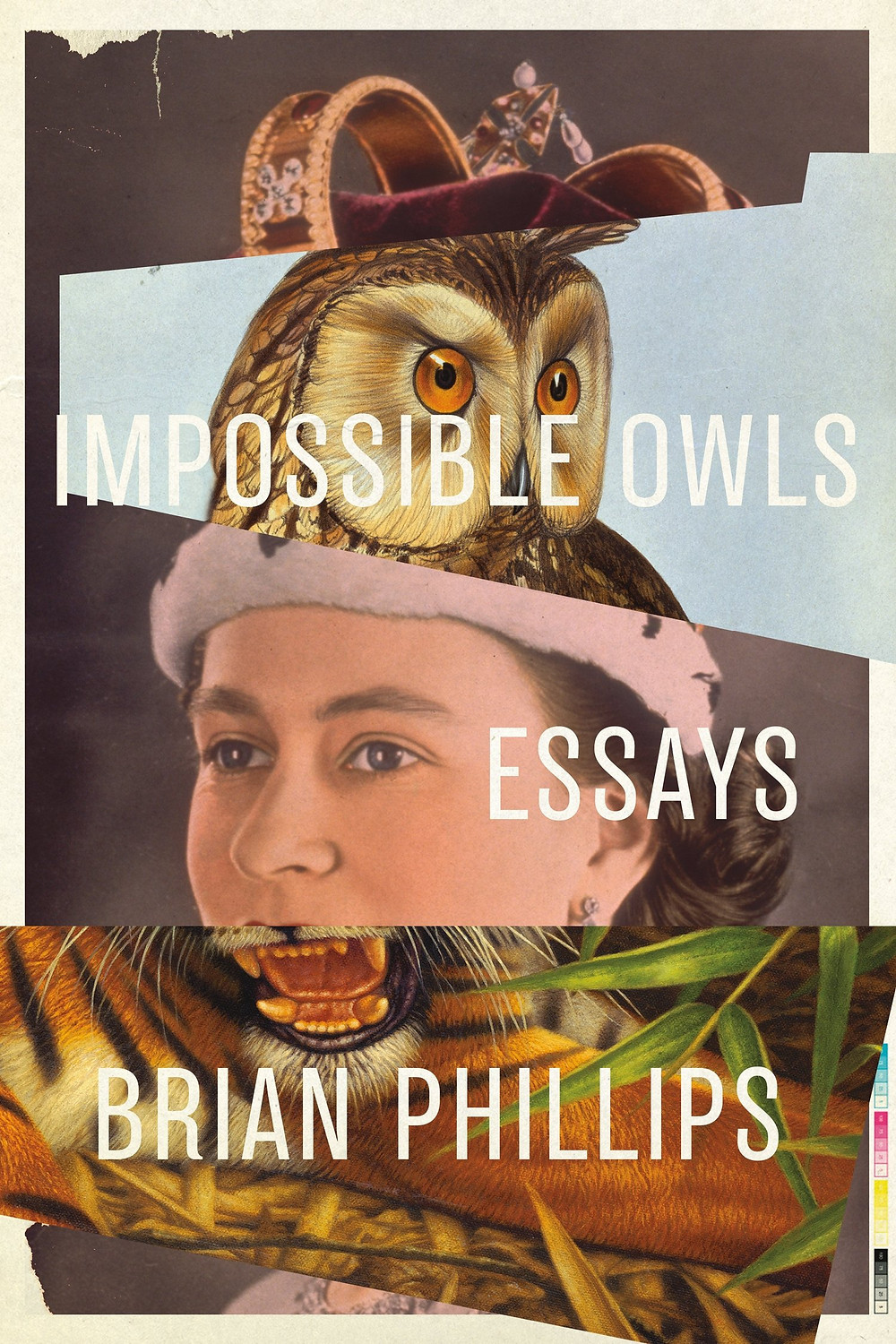 Impossible Owls by Brian Phillips : the book slut book reviews
