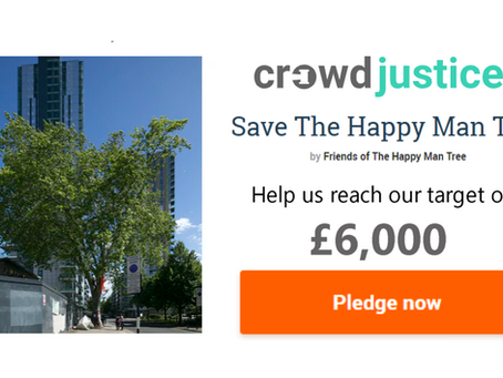 Support legal action to save the tree