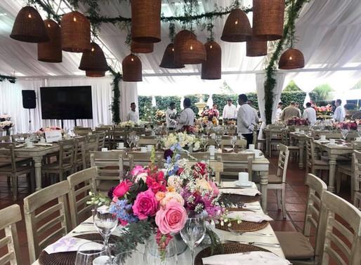 Proflora 2019 Held in Bogotá, Princess Japanese Garden Rose Wins Award