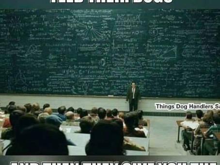 Hunde füttern ist keine Raketenwissenschaft!