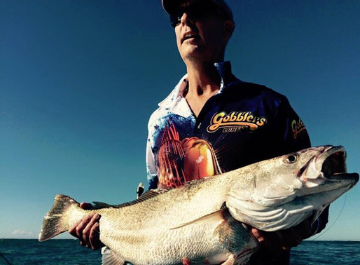 How to Catch Mulloway on Soft Plastics - Gobblers Lures Blog