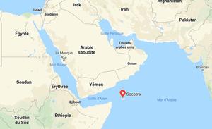 marais salants multicolores de l'Ile de Socotra au Yemen