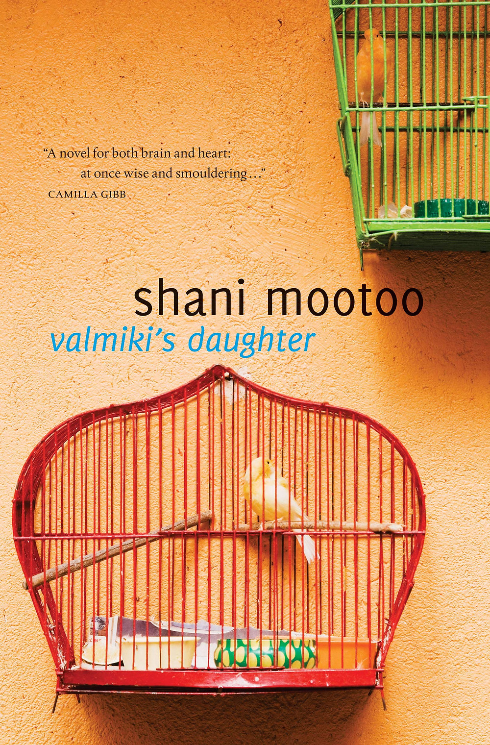 Valmiki's Daughter by Shani Mootoo : the book slut book reviews