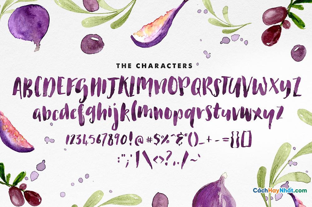 Chia Sẻ Font Chữ iCiel Les Fruits Việt hóa Tuyệt Đẹp Dùng Cho Thiết Kế