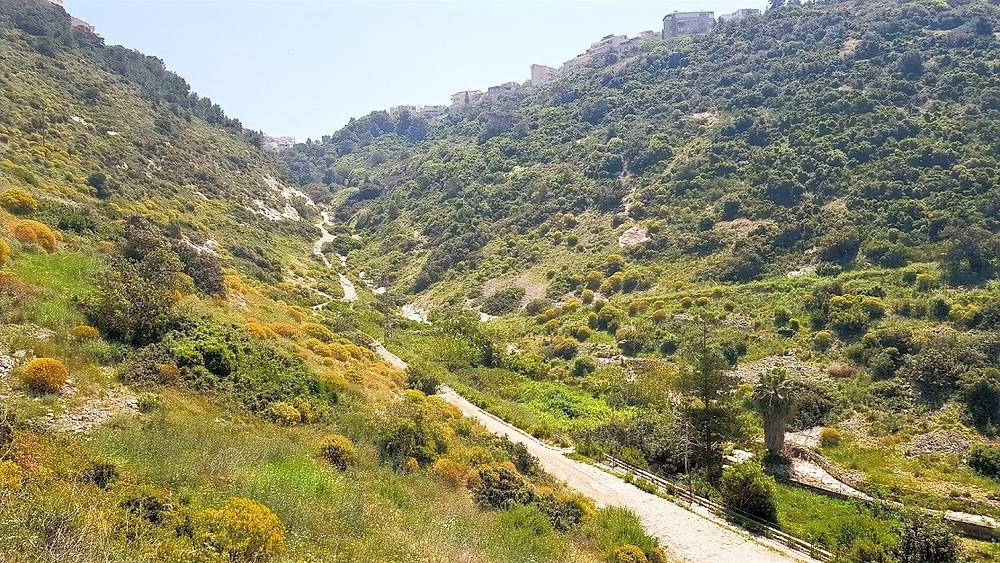 נחל שיח מסלול טיול בחיפה