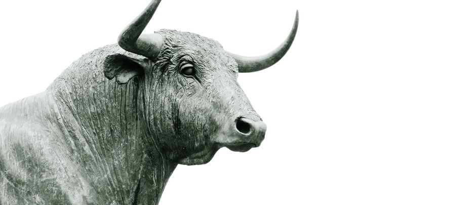 Indian Equity Markets are on a Rally!
