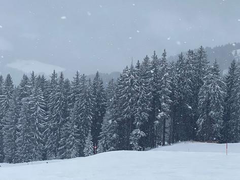 Snow- & Partyausfahrt 2020