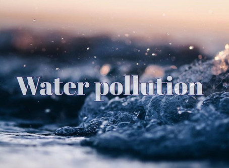 Water pollution〜水質汚染〜