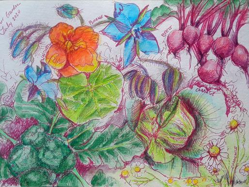 Art Habits from the Garden