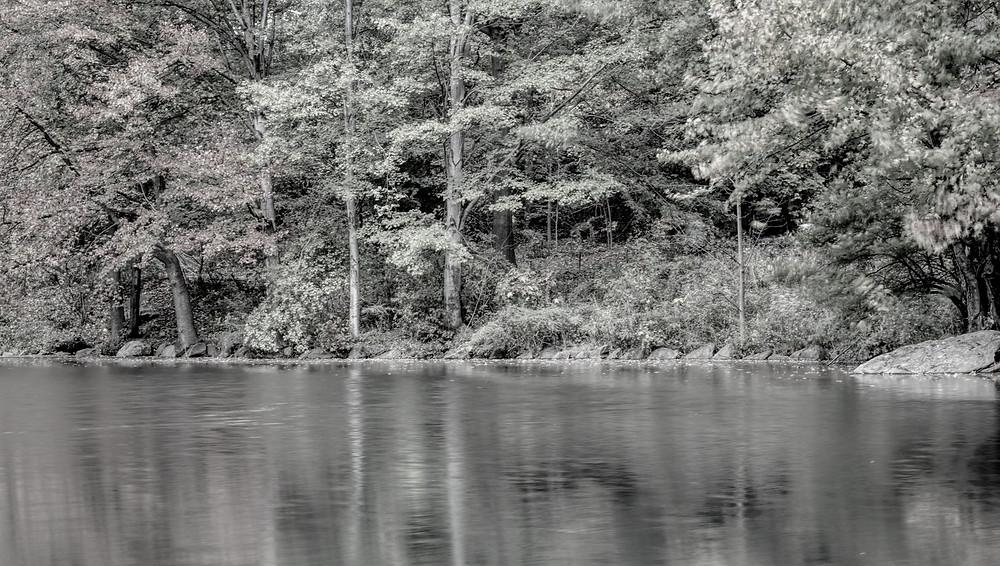 Autumn Image - Edited in Luminar and Aurora HDA