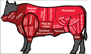 French Beef Cuts