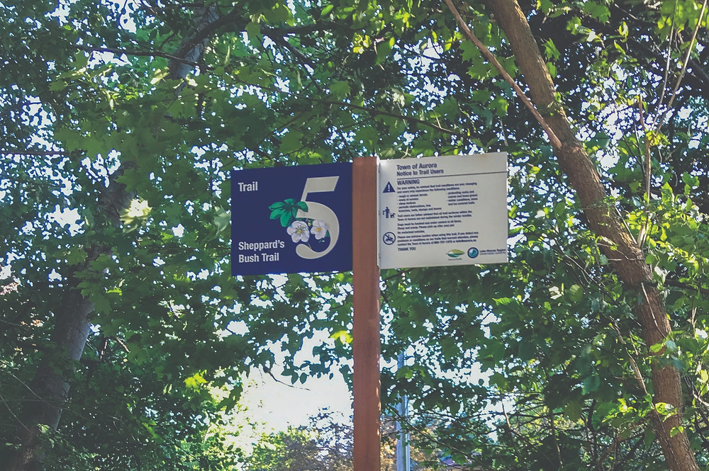 powder-coated graphics on aluminum wayfinding sign in purple and white on forest trail