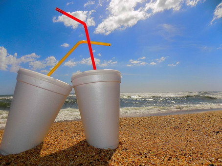 Maryland General Assembly Considers Ban on Styrofoam Food Containers