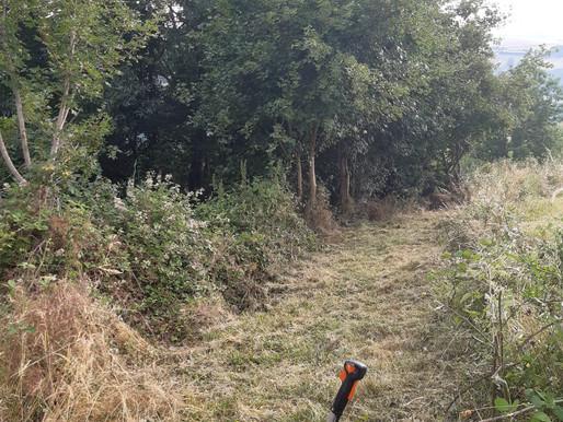 Opération débroussaillage du chemin rural de la Croix Paquet