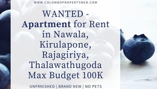 WANTED - Apartment/House for Rent in Nawala, Kirulapone, Rajagiriya, Thalawathugoda BRAND NEW