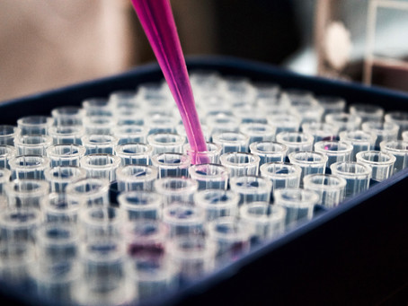 Cosmetic product safety: Betting on the in vitro assays