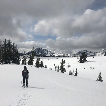 A Journey Into the Okanagan Range.