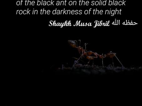 Allah Hears you