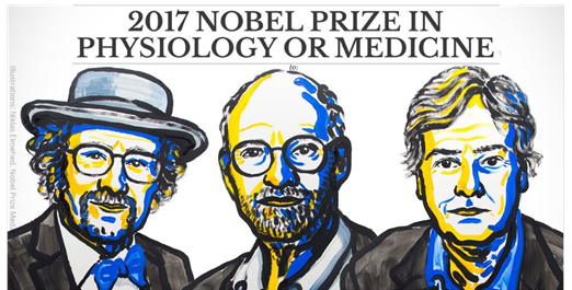 (2017 NOBEL PRIZE IN PHYSIOLOGY OR MEDICINE)