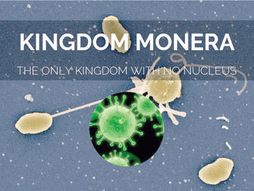 The 5 Great Kingdoms of Organisms