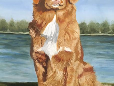pet portrait in oils....in progress