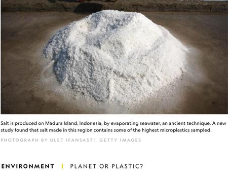 Plastic in Salt