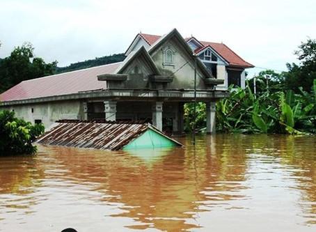 Augmenter la résilience et la protection des populations côtières au Vietnam