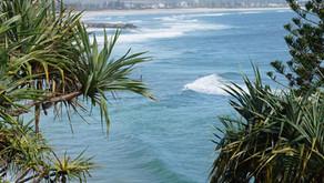 海水浴規制中の体験スクール、入会について