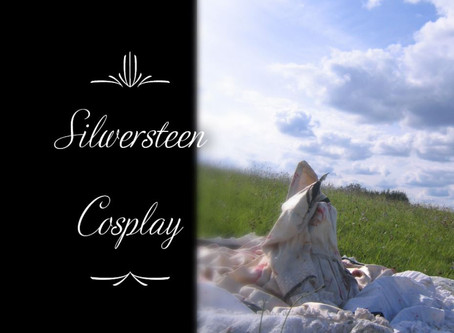 """Sei dein Star 2 - Cosplay"""