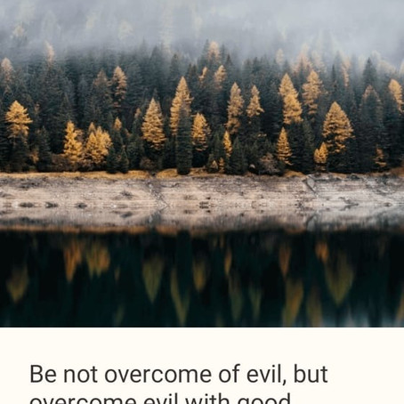 Be not overcome of evil, but overcome evil with good.