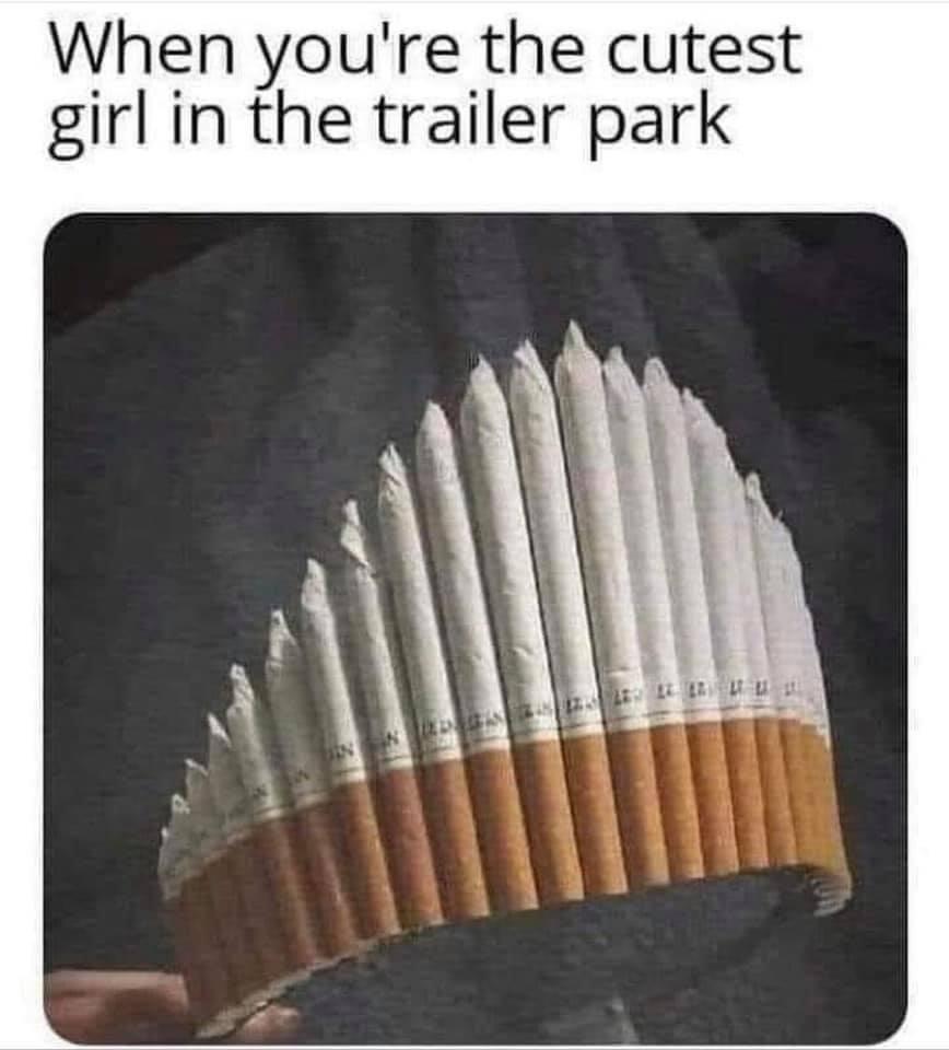 Funny Trailer Park Memes