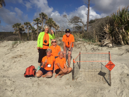Pic of Nest #3 and the team that found it