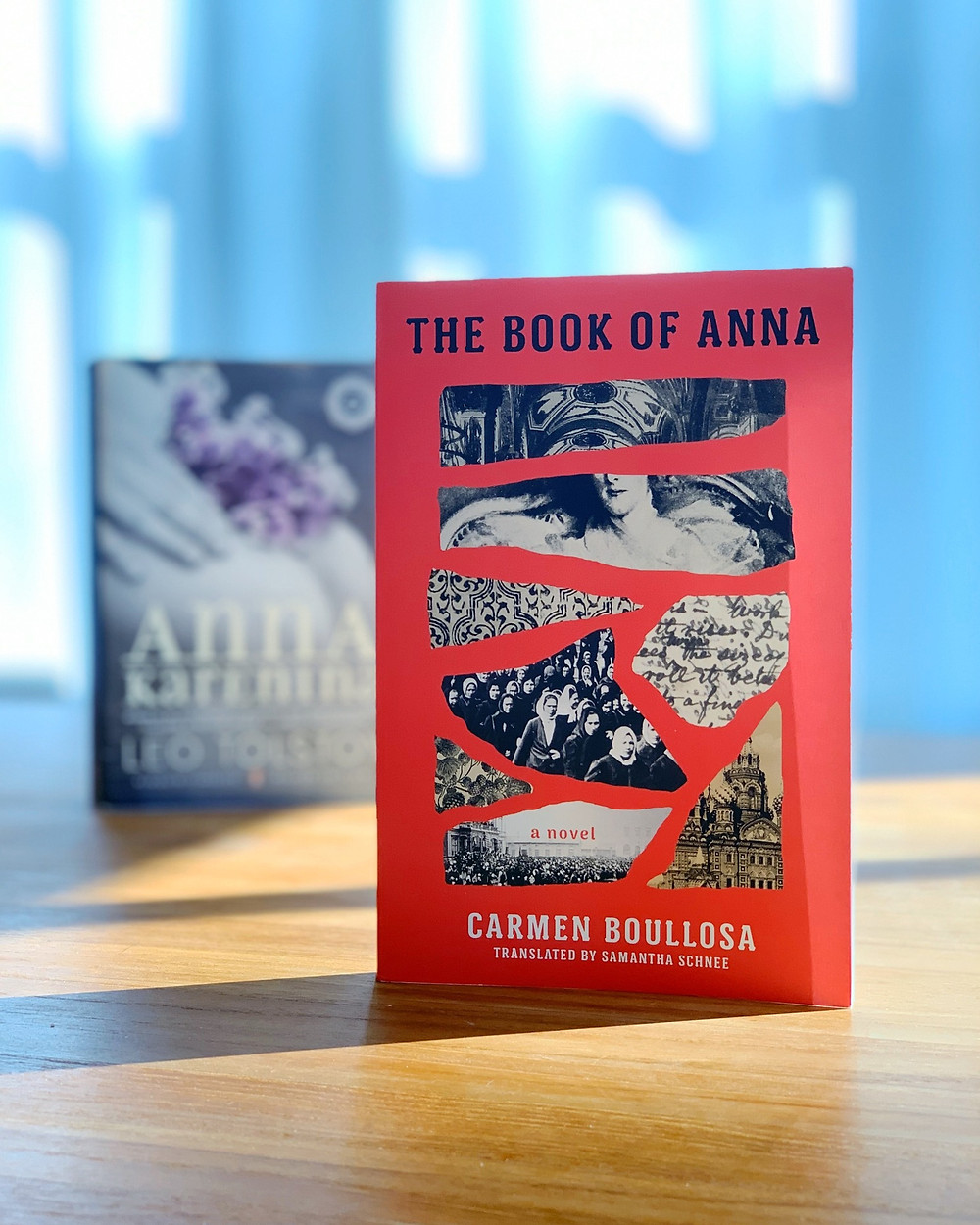 A copy of Anna Karenina and The Book of Anna lie on a table in shadow