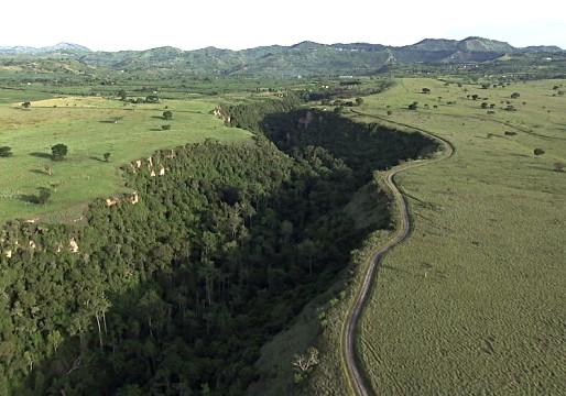 The Sunken Forest of Kyambura Gorge