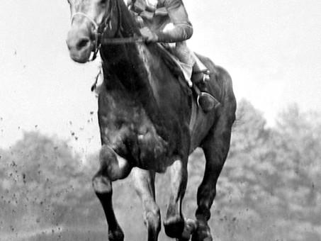 Native Dancer: Racing's Grey Ghost
