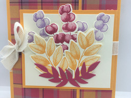 FUN FOLDS and Forever Fern. Great Ways to Add that Little Something Different to your Cards