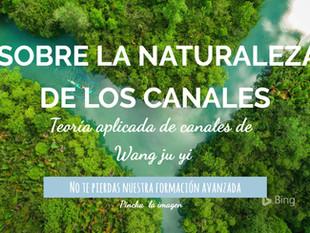 Sobre la naturaleza de los canales