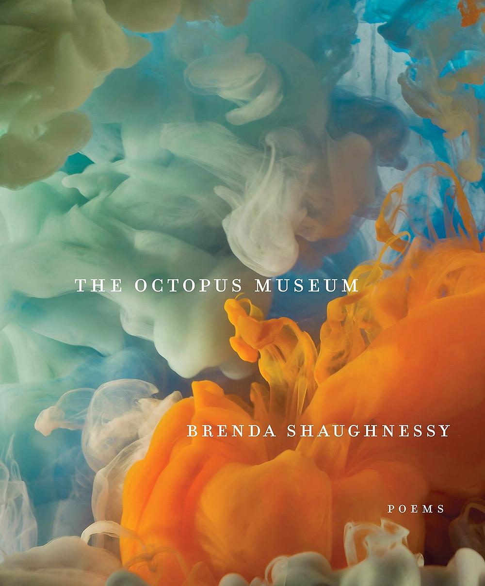 The Octopus Museum by Brenda Shaughnessy : the book slut book reviews thebookslut
