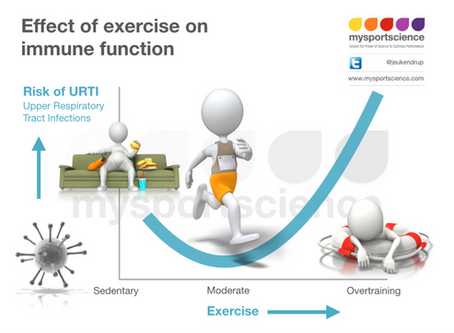 Effects of exercise on immune function and risk of infection