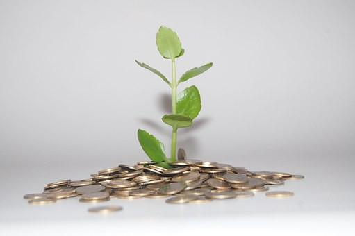 abundancia, dinero, millonario, crecer, se el jefe, hectorrc.com