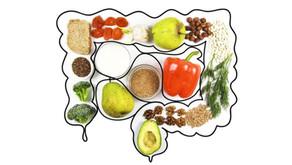 Verdauung, Unverträglichkeiten, Ernährungsberatung