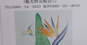 [2020年11月号] 11月イベント紹介