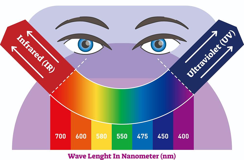 visible spectrum