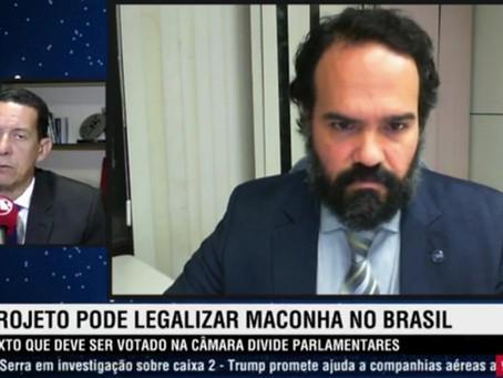"""SENAPRED reafirma posição contrária a legalização da cannabis e alerta: """"PL 399 é cavalo de Tróia"""""""